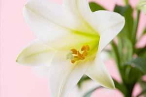 白癜风患者做哪些护理利于白斑的康复